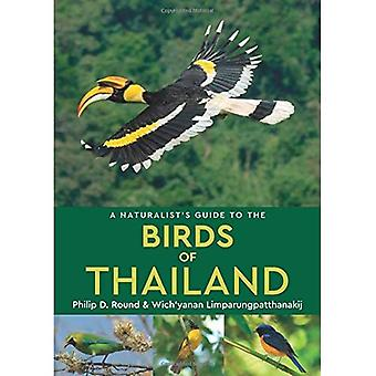 A Naturalist's Guide to the Birds of Thailand (Naturalist's Guides)