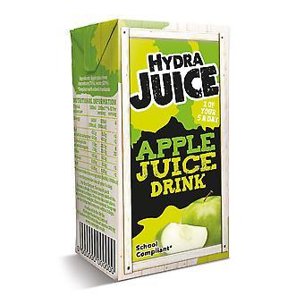 Hydra Apple Juice Drink Cartons