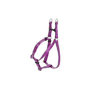 Ferribiella Padded Ny Leash + Chain 2X90Cm 12Mm