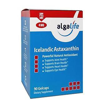 Algalife Islandais Astaxanthine, 4 mg, 90 Caps