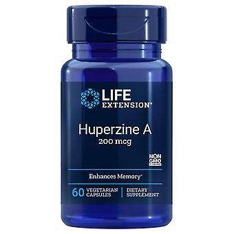 Lebensdauer Verlängerung Huperzine A, 60 Kappen