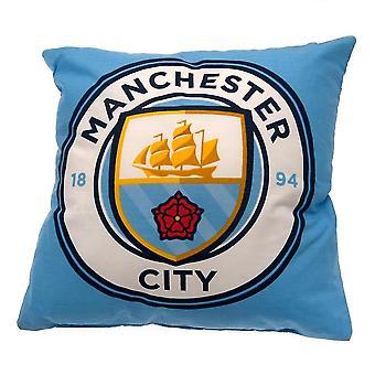 Chair sofa cushions cushion