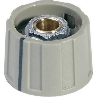 OKW A2531068 Control knob Grey 1 pc(s)