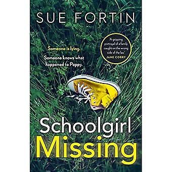 Schoolmeisje Missing: Ontdek de geheimen van het gezinsleven in de meest aangrijpende page-turner van 2019