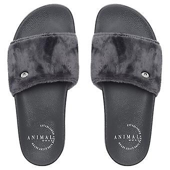 Animal Womens Slyd Slider Flip Flops | Magnet Grey