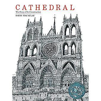 Katedra: Historia budowy
