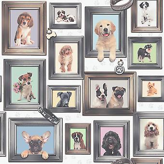 Rasch Puppy Love Dogs In Frames Pattern Image Frame Motif Fond d'écran 272703