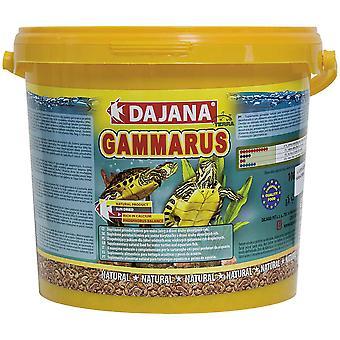 Dajana Gammarus (Reptiles , Reptile Food)