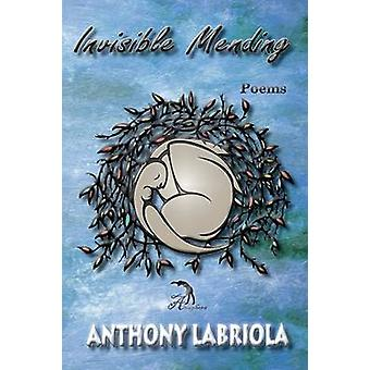 Invisible Mending Poems by Labriola & Anthony