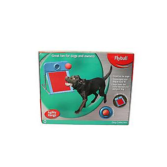 Rosewood Dog Agility Flyball Kit