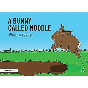 A Bunny Called Noodle by Melissa Palmer - 9780367185336 Book