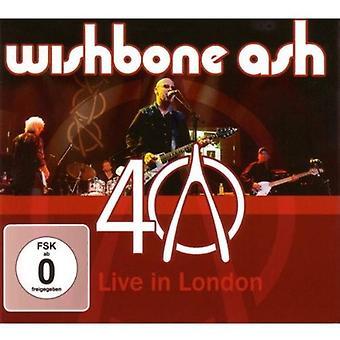 40th Anniversary Live [CD] USA import