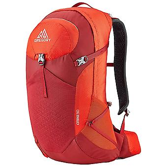 Gregory Red Citro 24 Backpack