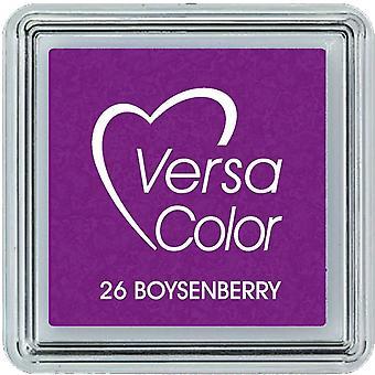 Versacolor Pigment Mustetyyny pieni - Boysenberry