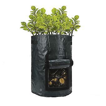 Dyrkning taske-vokse økologisk på balkonen