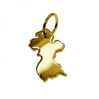 Anhänger Landkarte Kettenanhänger in gold gelb-gold in der Form von GUYANA