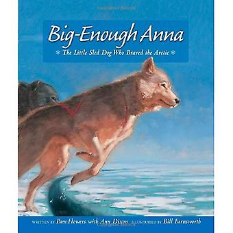 Big-Enough Anna: The Little Sled Dog Who Braved Th