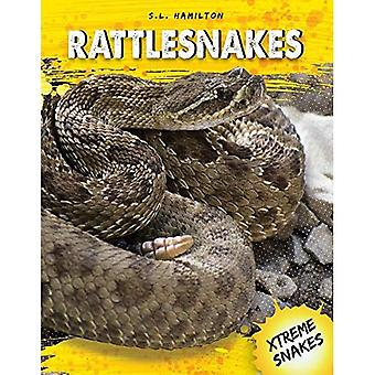 Crotales (serpents Xtreme)
