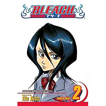 Bleach: v. 2