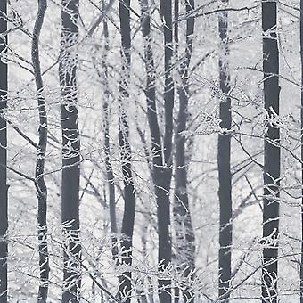 Frostet træ tapet Arthouse 670200