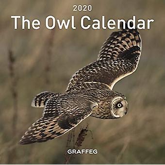 Owl Calendar