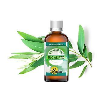 Eucalyptus 30 ml of oil