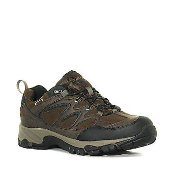 New Hi-Tec Men's Altitude Trek Low Waterproof Shoes Brown