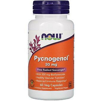 Now Foods, Pycnogenol, 30 mg, 60 Veg Capsules
