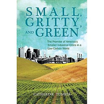 Small, Gritty, and Green: The Promise of America's Smaller Industrial Cities in a Low-Carbon World (Urban and...
