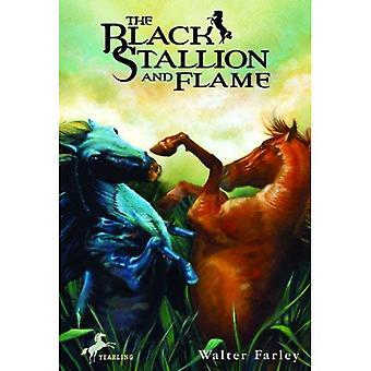 Czarny ogier i płomień