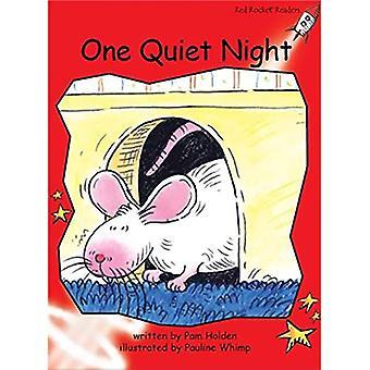 En lugn natt: Nivå 1: tidigt (röd raket läsare: Fiction uppsättning B).