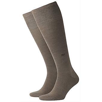 Burlington Leeds Knee High chaussettes - Pebble Brown