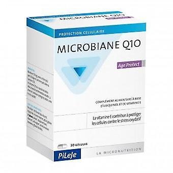 Pileje Microbiane Q10 Age Protect 30 Capsules