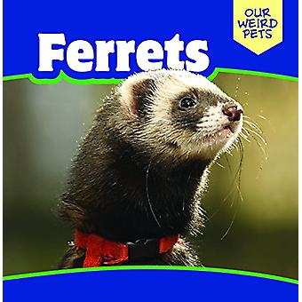 Ferrets by Mia Bennett - 9781508154167 Book