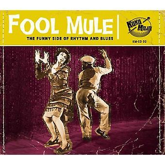 Artiste divers - Fool Mule [CD] Usa import