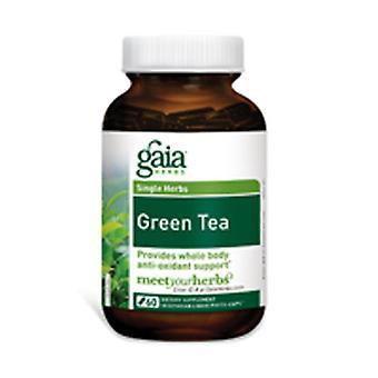 Gaia Kräuter Grüner Tee, 60 Kapseln