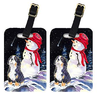 Carolines Treasures  SS8575BT Pair of 2 Bernese Mountain Dog Luggage Tags