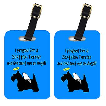 Carolines Treasures  AN1147BT Pair of 2 Scottish Terrier Luggage Tags