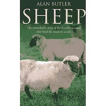 Moutons: L'histoire remarquable de l'Humble Animal qui construit le monde moderne