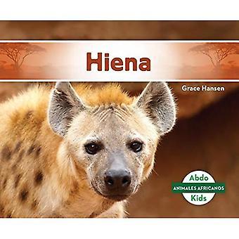 Hiena / hiena (Animales Africanos / africanas animales)