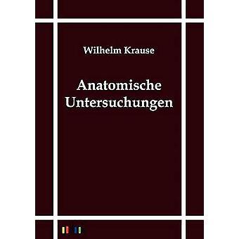 Anatomische relevantes von Krause & Wilhelm