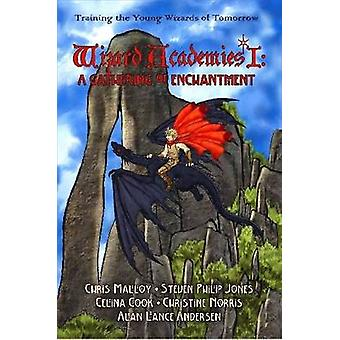 Wizard Academies I  A Gathering of Enchantment by Alan Lance Andersen & Edited by
