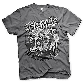 Aerosmith Boston 2 Joe Perry Steven Tyler rock Official T-shirt