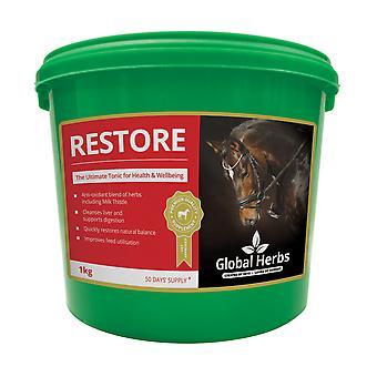 Global Herbs - Restore 1kg