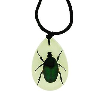 The Olivia Collection Glow in Dark Bug Necklace with REAL Green Chafer Beetle