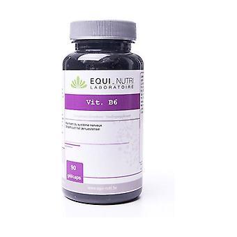Vitamin B6 90 capsules