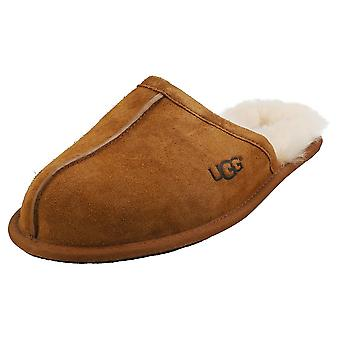 UGG Scuff Mens Slippers Shoes in Chestnut