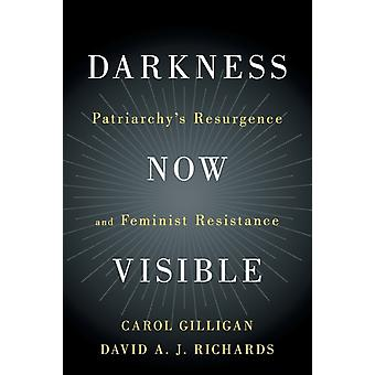 Darkness Now Visible by Gilligan & Carol New York UniversityRichards & David A. J. New York University