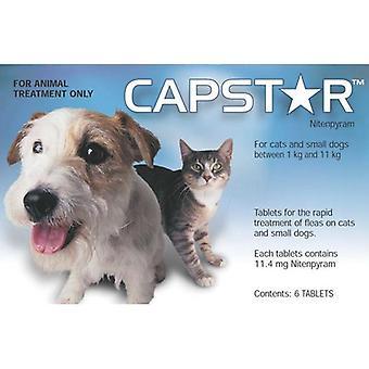 Capstar pieni koira ja kissa Tabletit