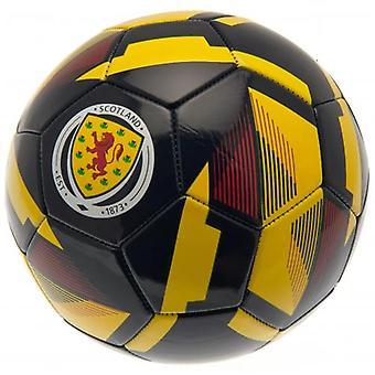 Schottland FA Football RX